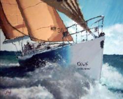velero 55