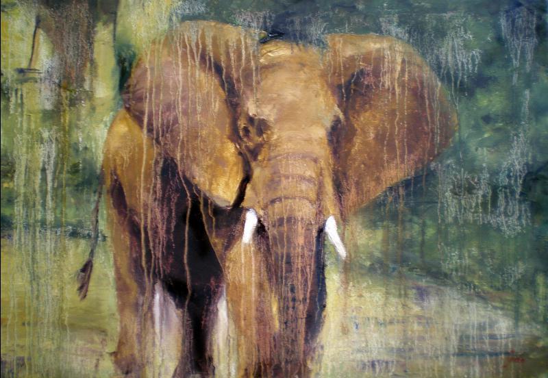 Llanto de elefante