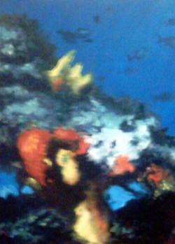 fondo marino 27