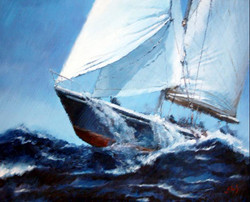 velero 29