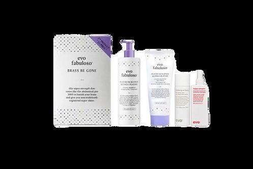 Platinum Shampoo and Conditioner Pack