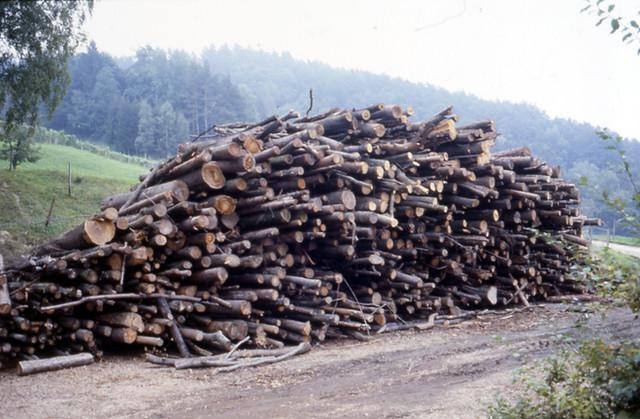 Biomasseptentiale abschätzen