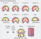 Messwerte der Nahwärmeanlage