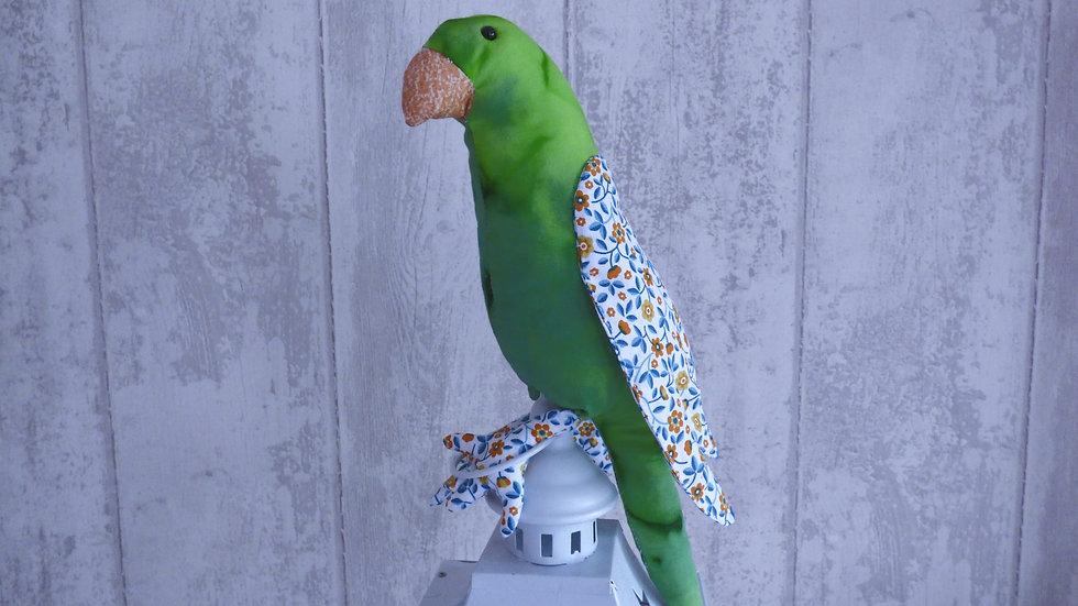 Perroquet coco