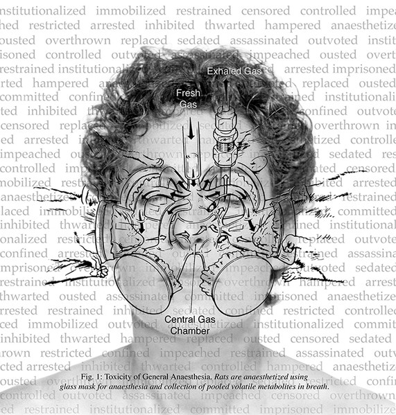"""Toxicity of General Anaesthesia (2002), 20 x 21"""" inkjet print"""