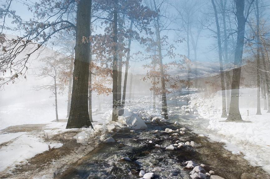 "Holzwege 33 (2011), 22.5 x 34"" digital photomontage/ chromogenic print, limited edition of 3"