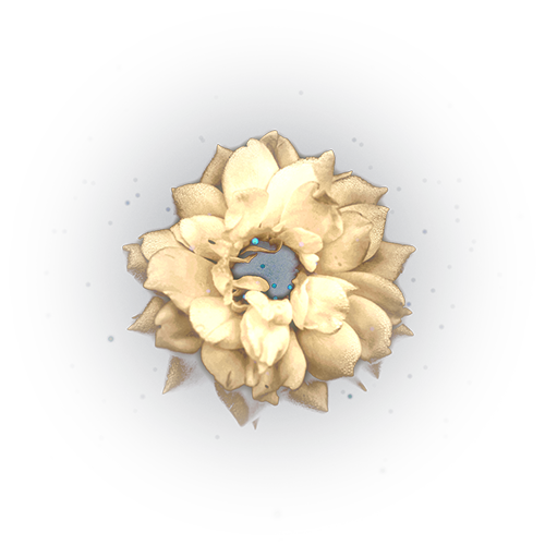 BB__BLOSSOMS_8.png