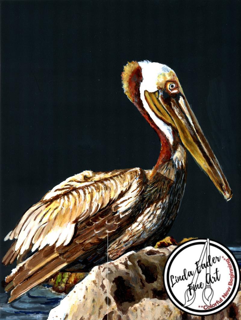 Moonlit Pelican