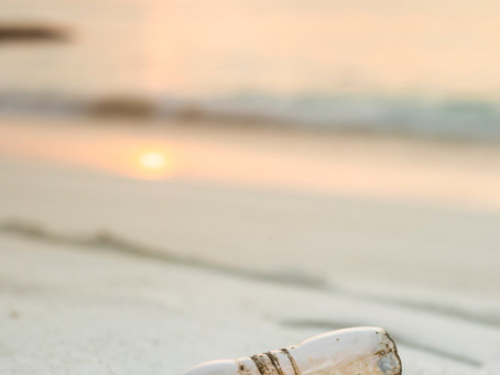 3 Proyectos que planean limpiar el mar