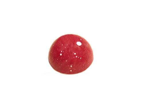 100g Erdbeer-Secco