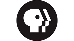 pbs-flat-logo-200-on-360.png