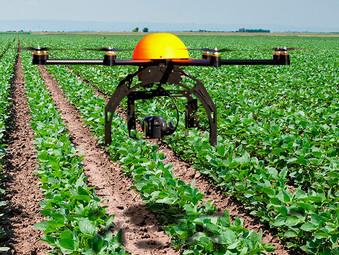 Drones gerando negócios na Agricultura