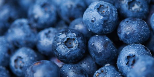 Are Blueberries REALLY A Superfood?
