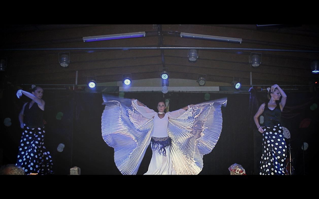 Espectáculo danza oriental flamenco