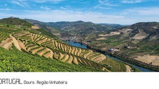 ref.ª 253 | Douro, Região Vinhateira
