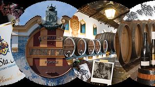 ref.ª 711   Adega de Colares, Sintra