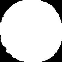 circulo_branco 250px.png