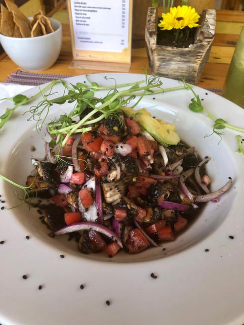 Mushroom Ceviche, PCM