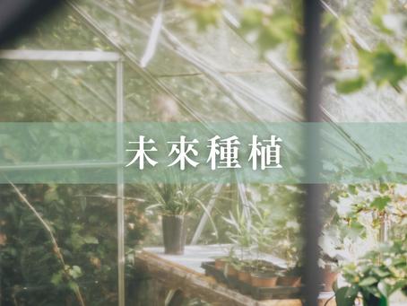 未來種植 [水耕VS 土耕]