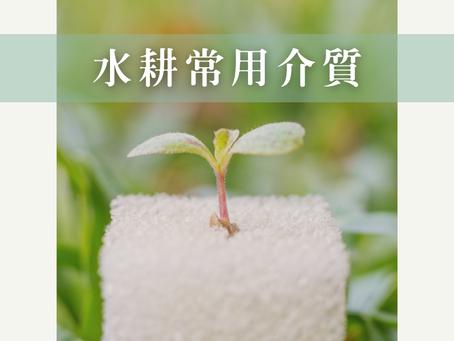 水耕常用介質