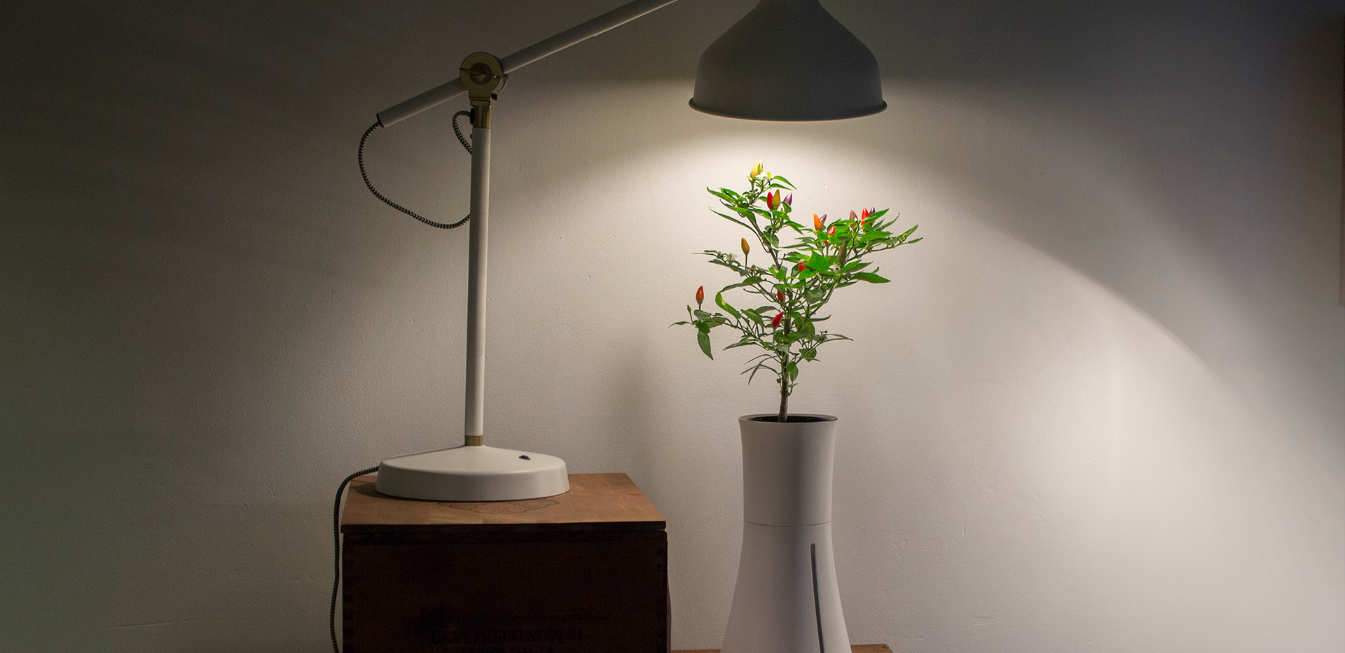 under_lamp_2.jpg