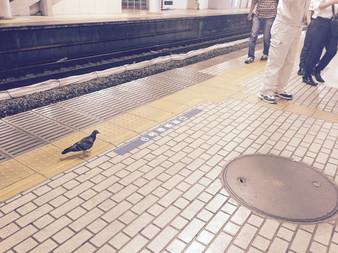 駅中ぶらり〜〜 品川