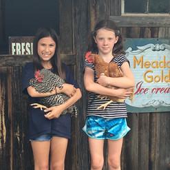 Chicken Handlers