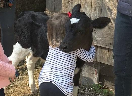 Cow Hug Unedited_edited_edited.jpg