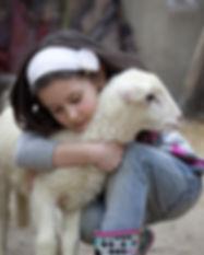 Kids Vets Lamb.jpg