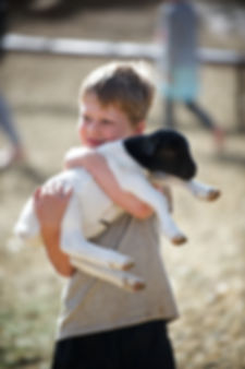 Boy and Goat.jpg