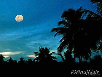 Twilight is a poem written by Anuj Nair. It is a Picture poem / Photo poem.