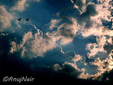 Thou Art That, Be Free is a poem written by Anuj Nair. It is a Picture poem / Photo poem.