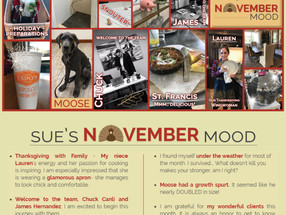 Check out Sue's Mood Board for November! Lots of exciting things happened last month!