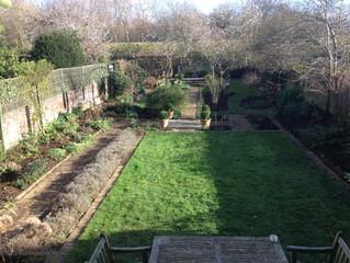 Garden restoration - February
