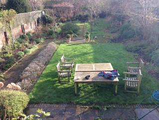 Garden Restoration - January