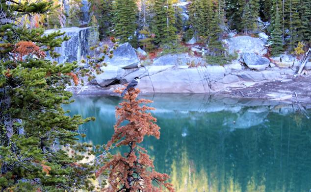 lakecolchuk - lake (16).jpg