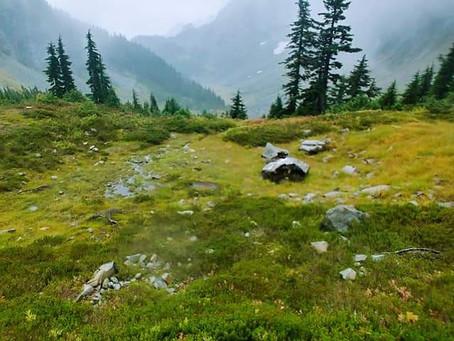 #77 Cascade Pass & Sahale Arm