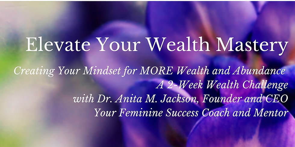 Elevate Your Wealth Mastery Challenge