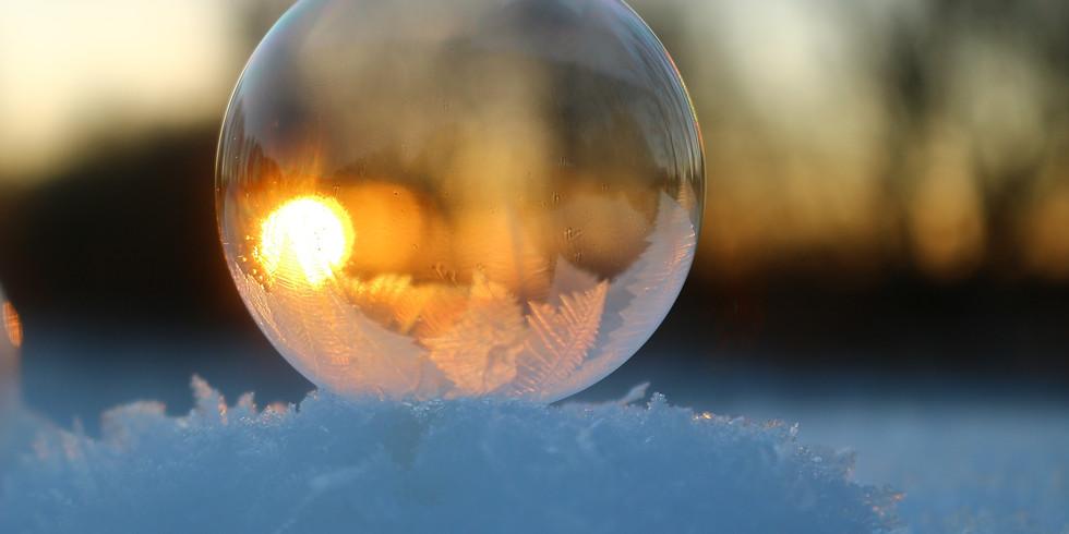 evolve: the wisdom of winter