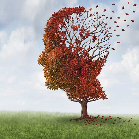 THE Great Fall Detox Series: THE Mind