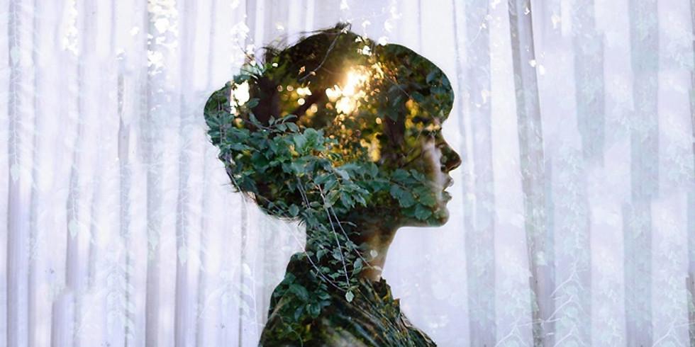 bloom: nourish to flourish