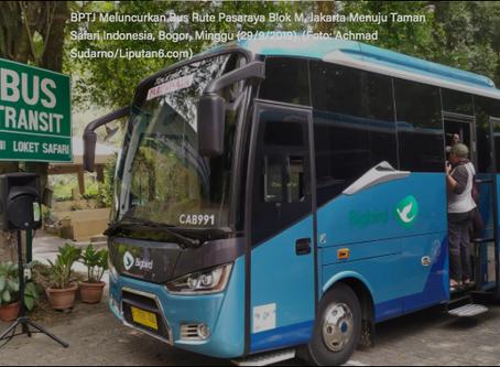 Bus Rute Blok M - Taman Safari Bogor Resmi Diluncurkan
