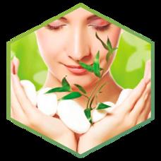salud-y-belleza-home_ico.png