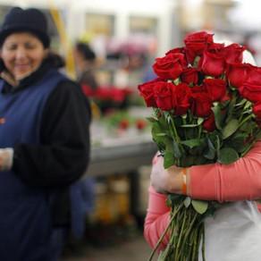 Bouquet Assembler