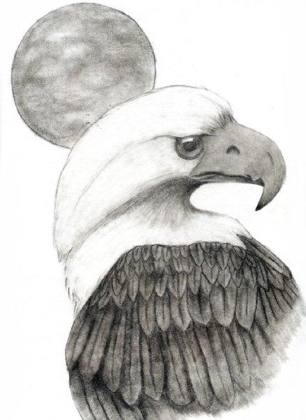 EAGLE & MOON
