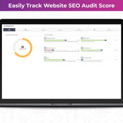 Track Your SEO Audit Score