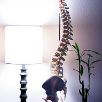 Colorado springs chiropractic office