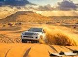 desert Saffari.jpg