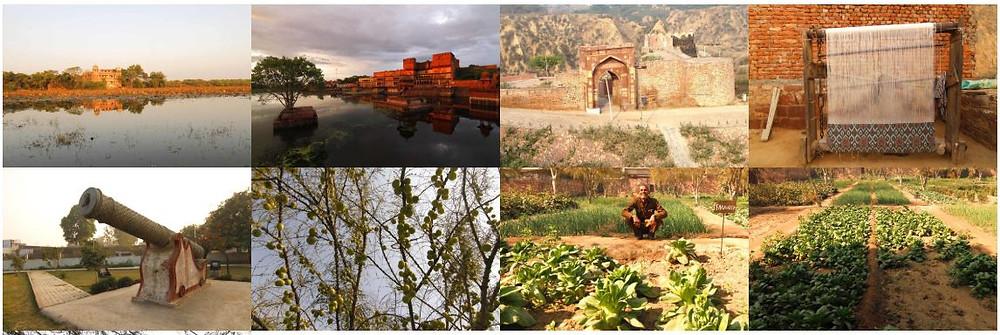 The Machkund temple, Chambal Boat Safari, National Chambal Sanctuary,Ramsagar Sanctuary,Chopra Shiv Temple,Chausat Yogini Temple,Shergarh Fort,Van Vihar Wild Life Sanctuary,Bateshwar Temple