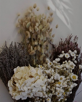 Fleurs-sechees_1024x1024_edited_edited.p